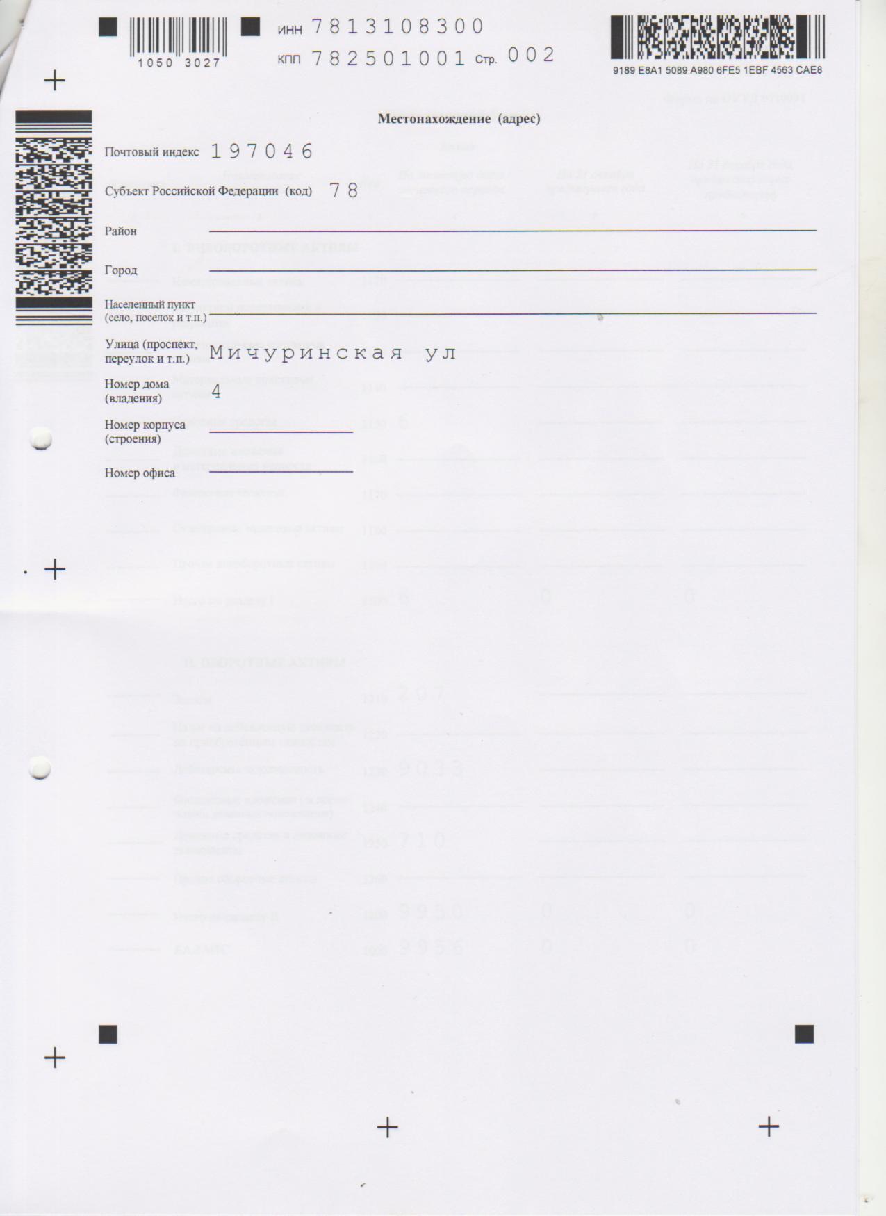 Бухгалтерская отчетность 2012 стр 2